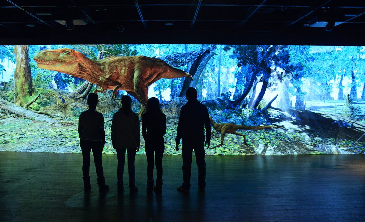 T rex wall projection
