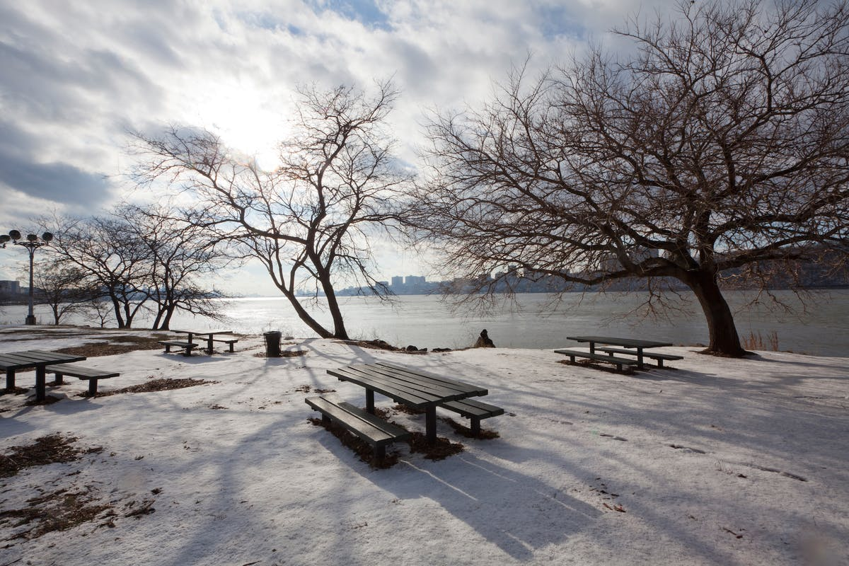 New York Has a Gift for Giving Happiness Year-Round