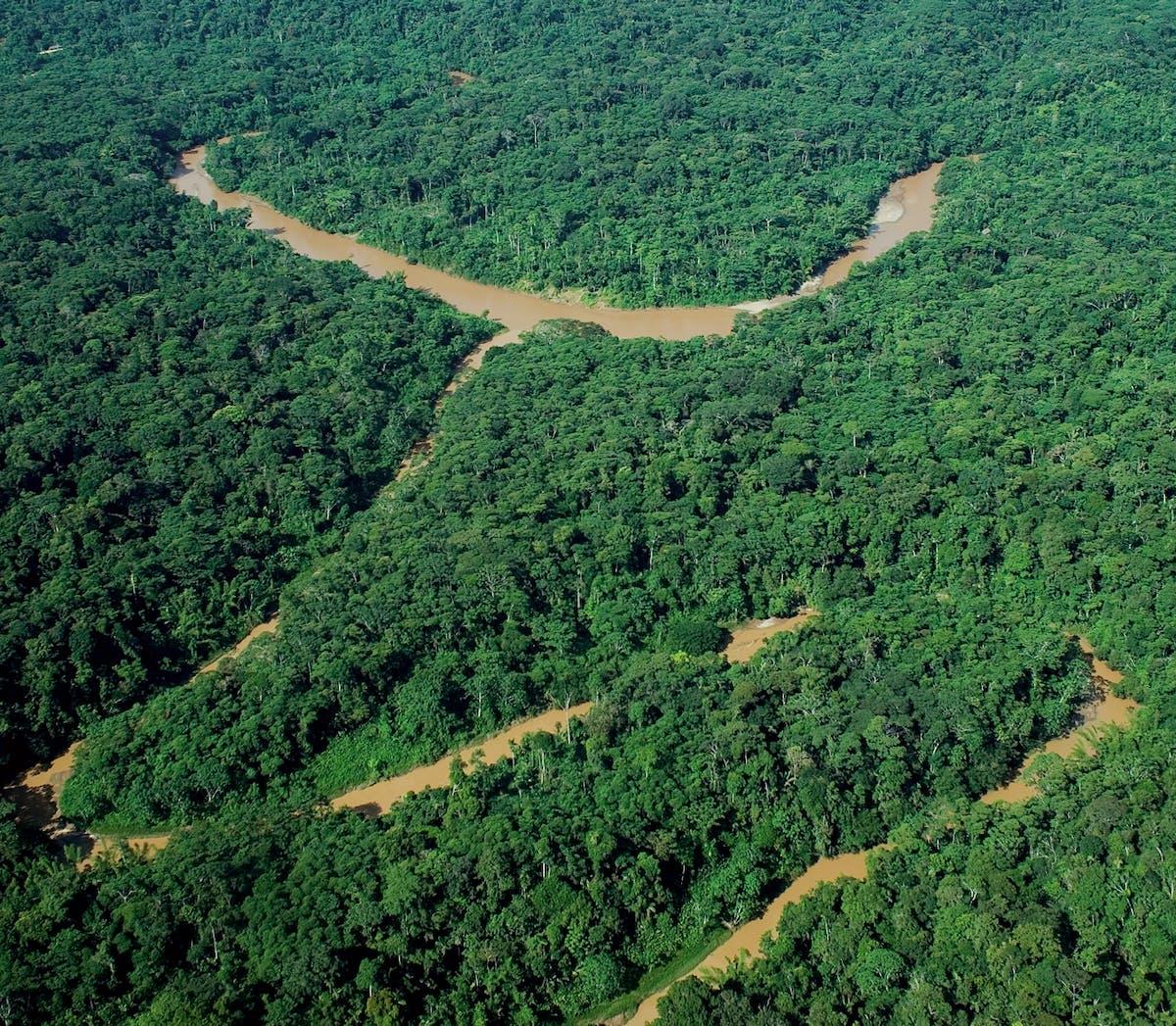 Webinar recap: Greg Asner and carbon emission imagery