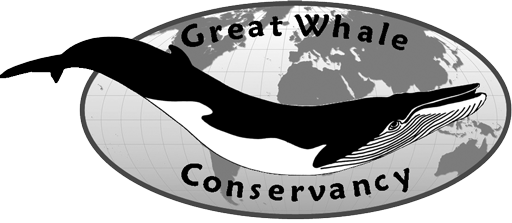 Great Whale Conservancy