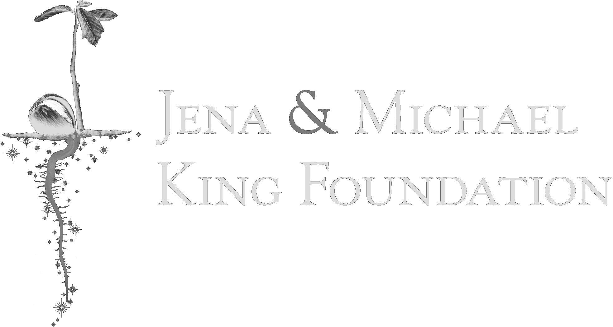 Jena & Michael King Foundation