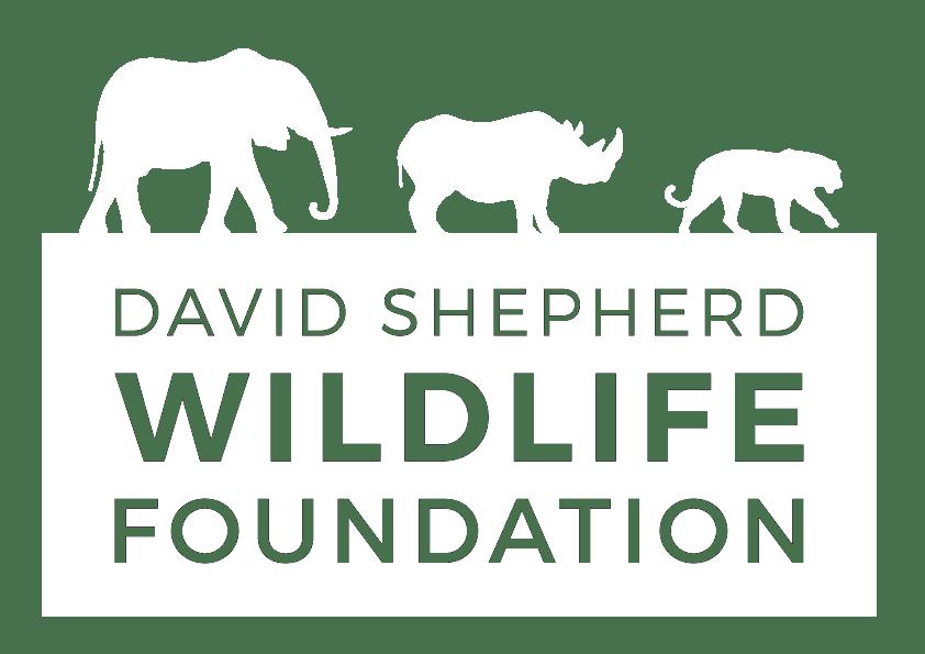 David Shepherd Wildlife Foundation