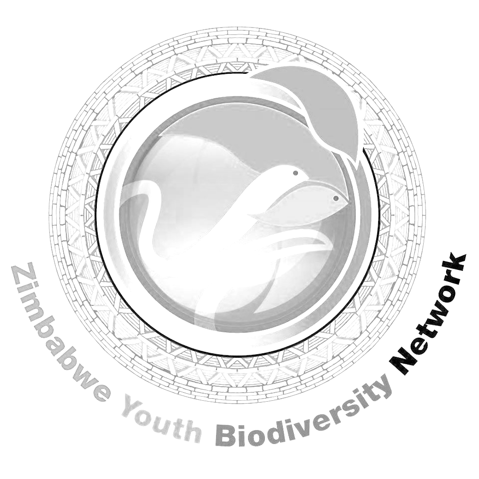 Zimbabwe Youth Biodiversity Network