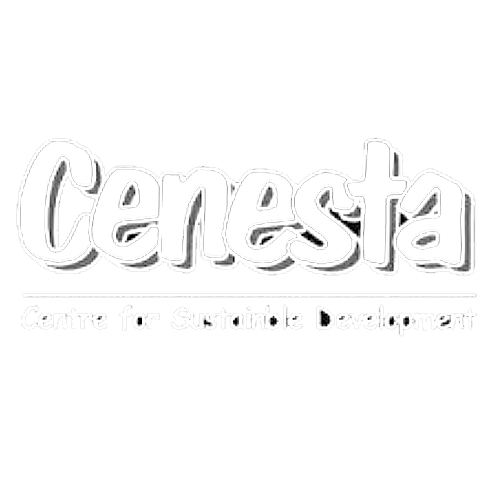 Centre for Sustainable Development and Environment