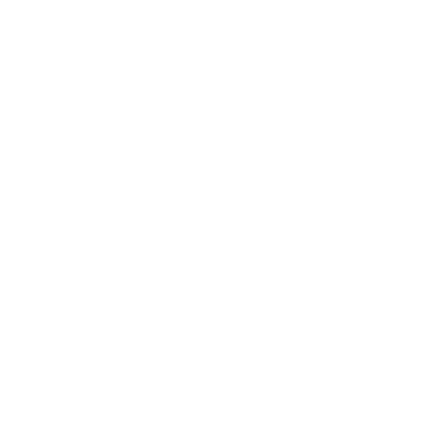 Foundation Earth