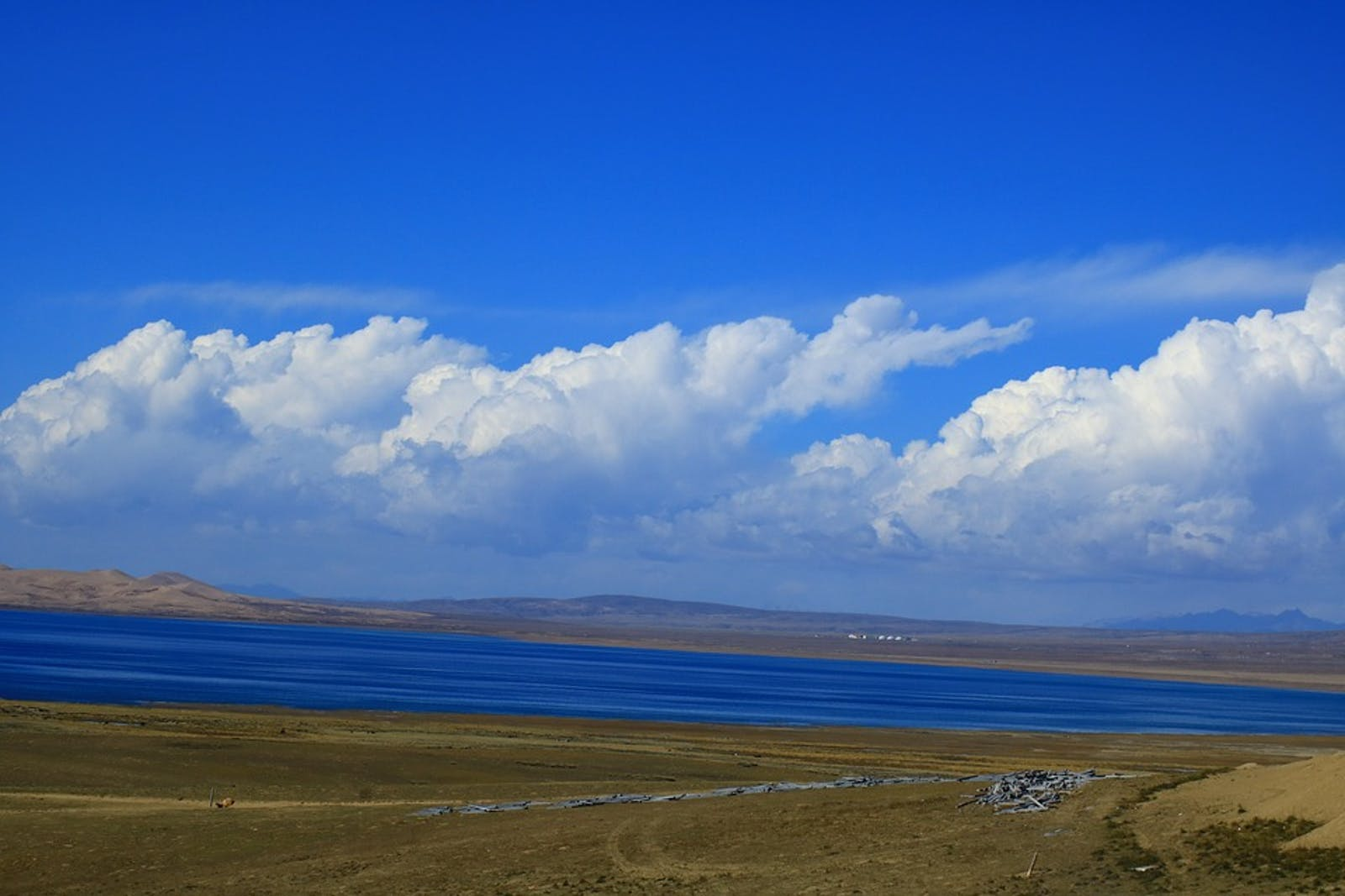 Central Tibetan Plateau Alpine Steppe