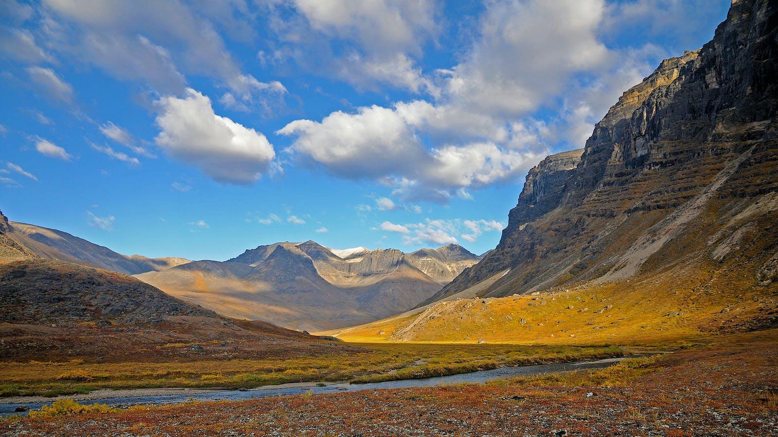 Brooks-British Range tundra