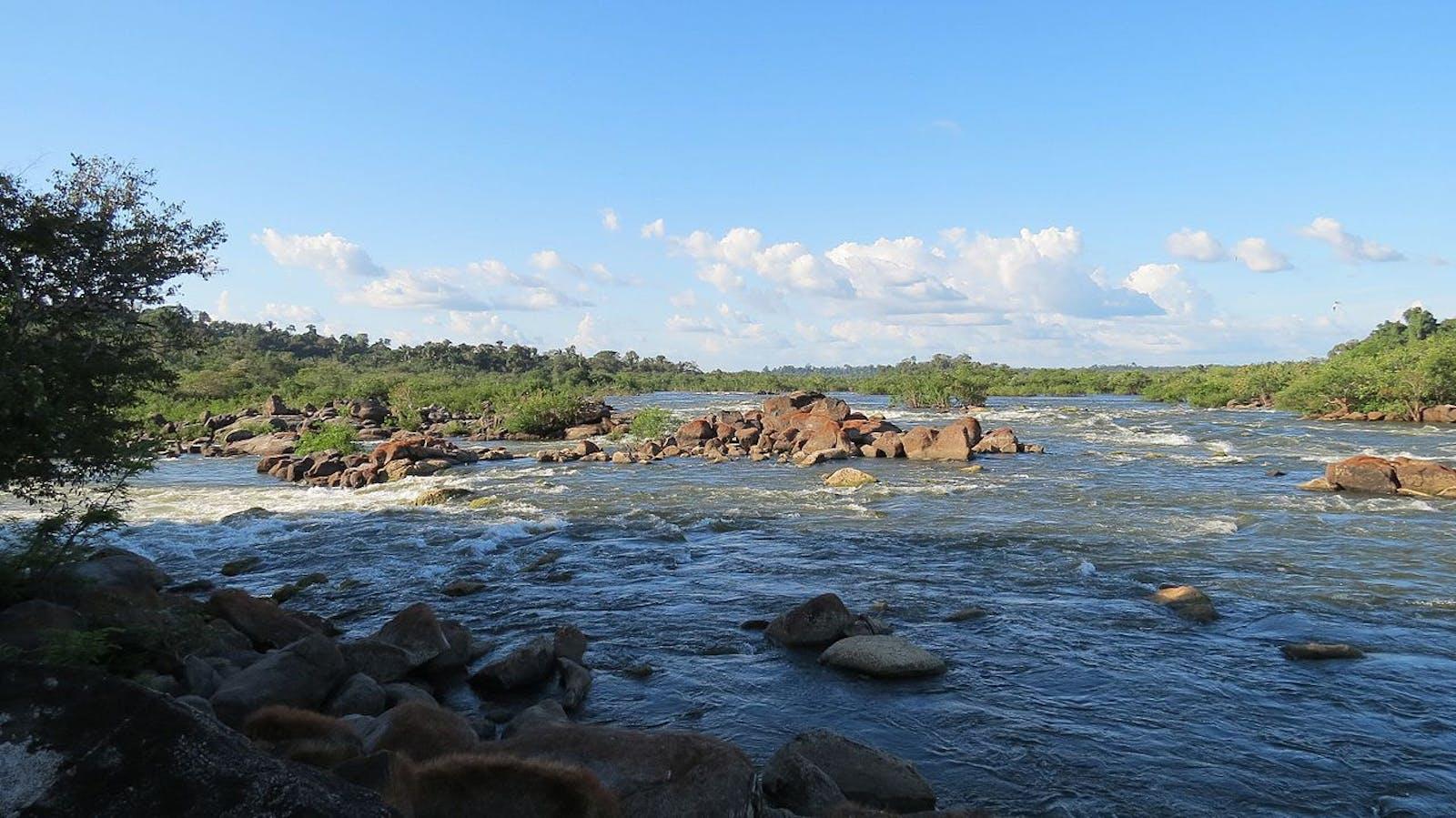 Tapajós-Xingu Moist Forests