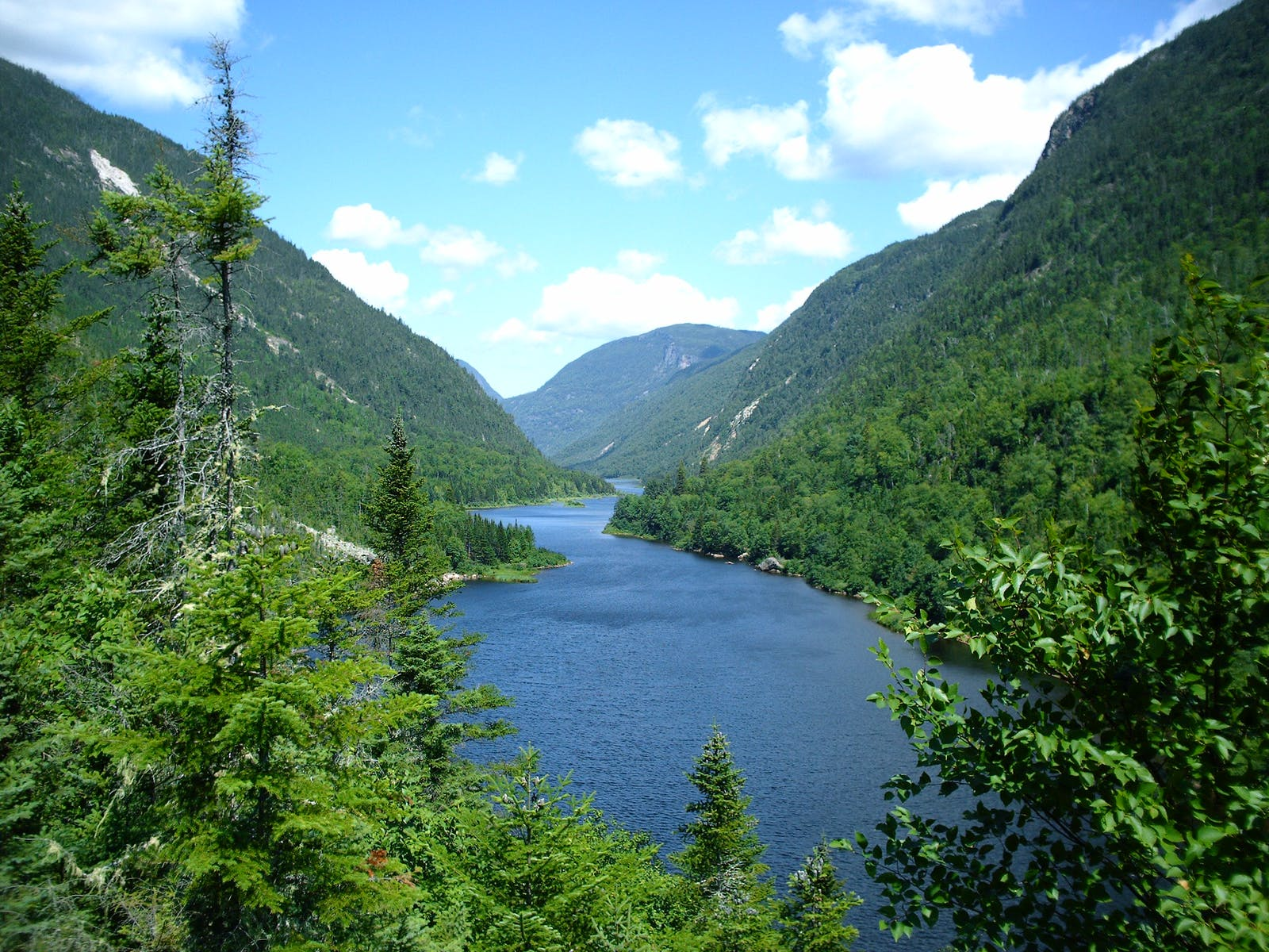 Eastern Canadian Temperate-Boreal Forest Transition