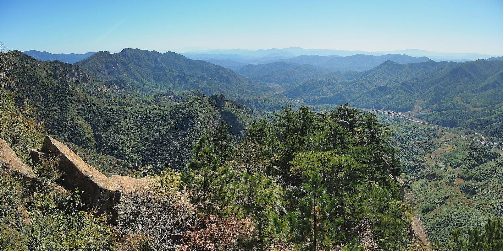 Central China Loess Plateau Mixed Forests