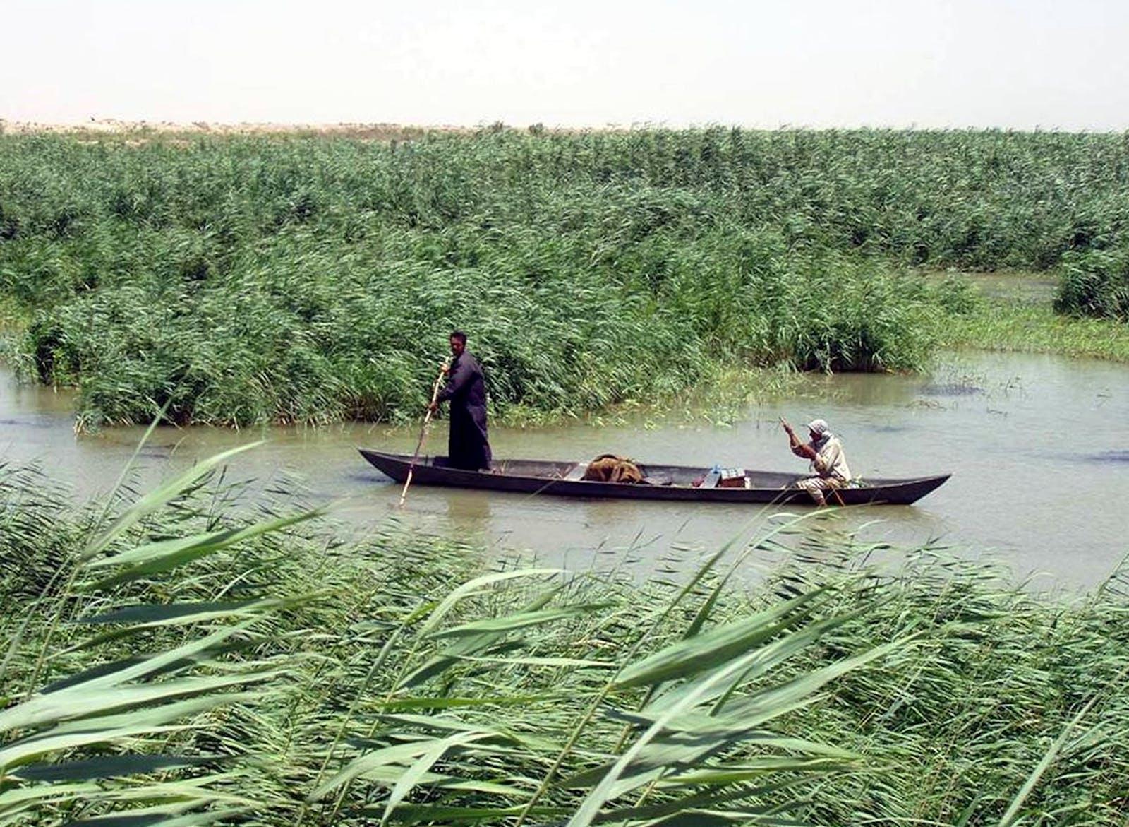 Tigris-Euphrates Alluvial Salt Marsh