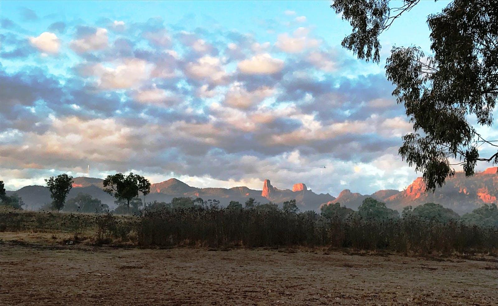Southeast Australia Temperate Savanna