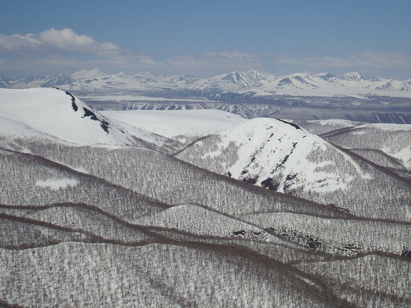 Kamchatka Taiga