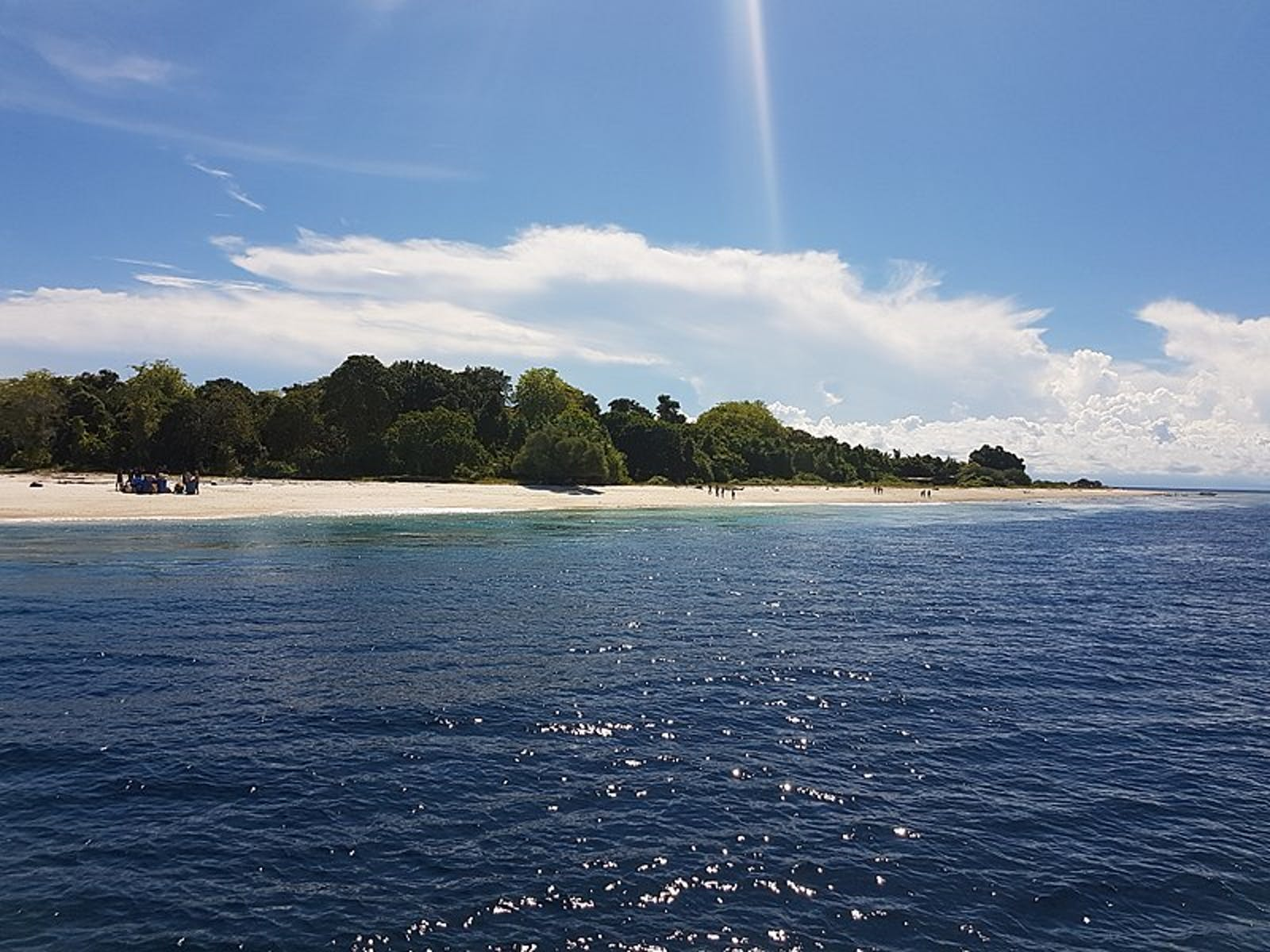 Sulu Archipelago Rainforests
