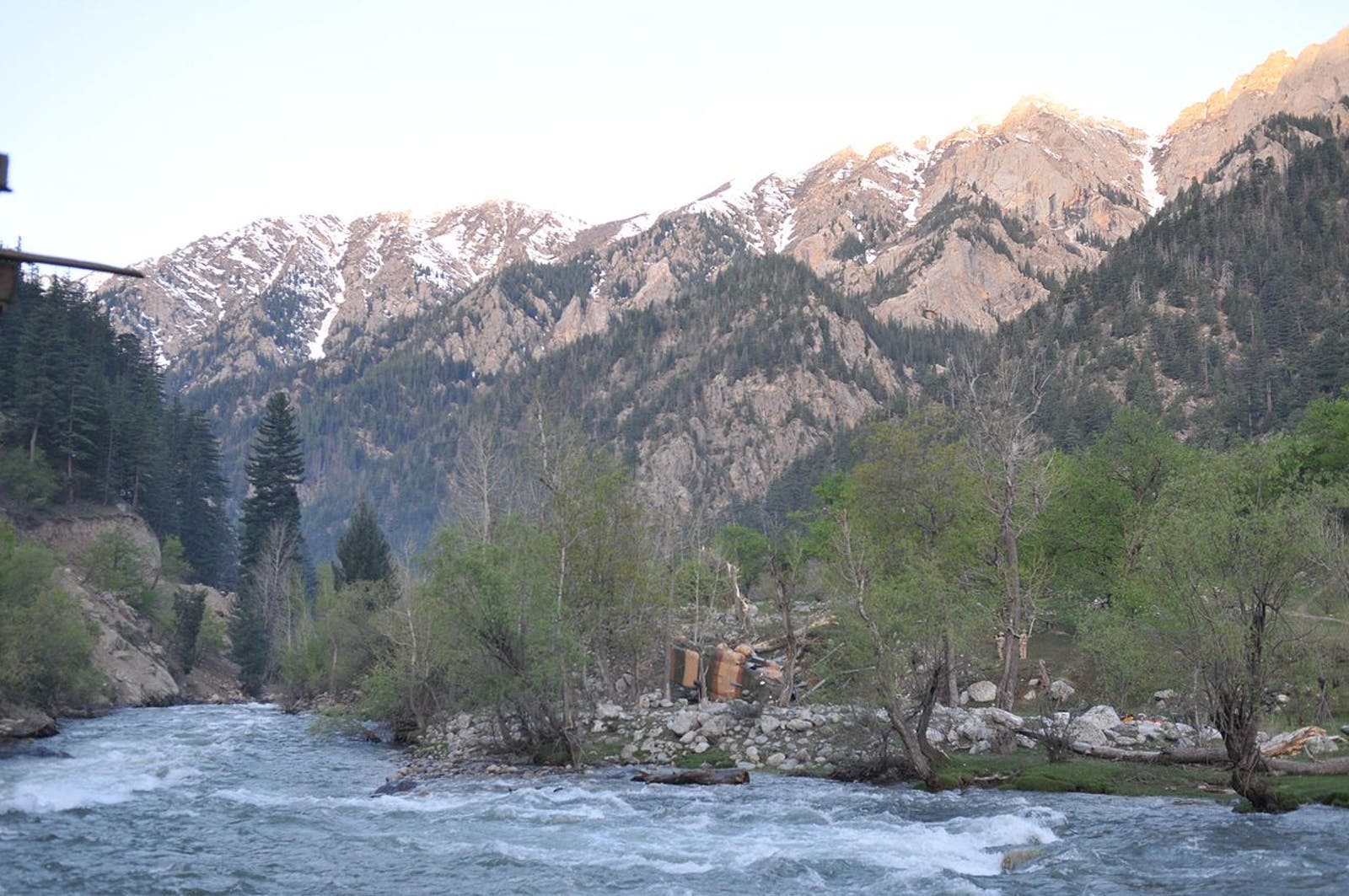 East Afghan Montane Conifer Forests