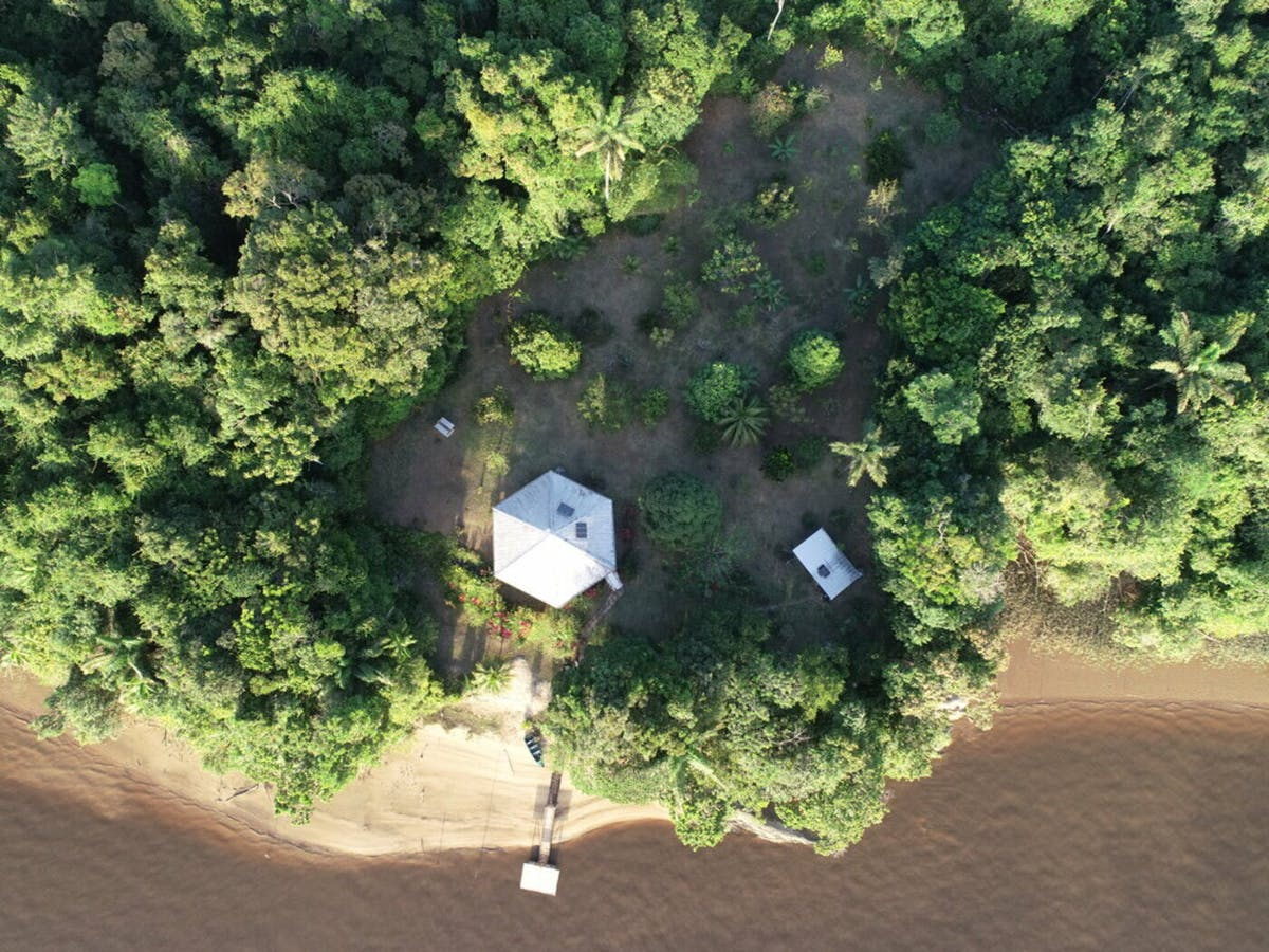 Preserving Critical Rainforests and Transforming Education at Sophia Point, Guyana
