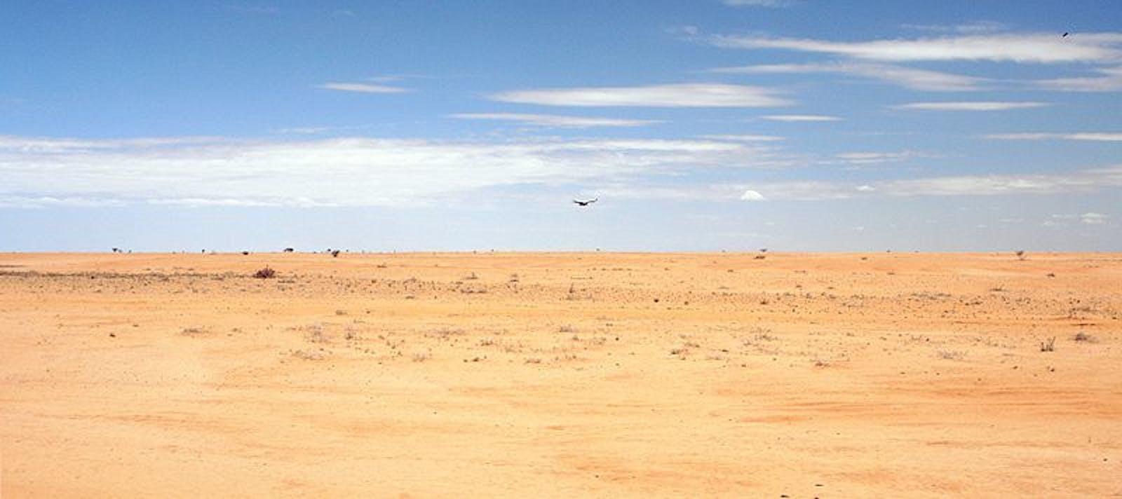 Masai Xeric Grasslands and Shrublands