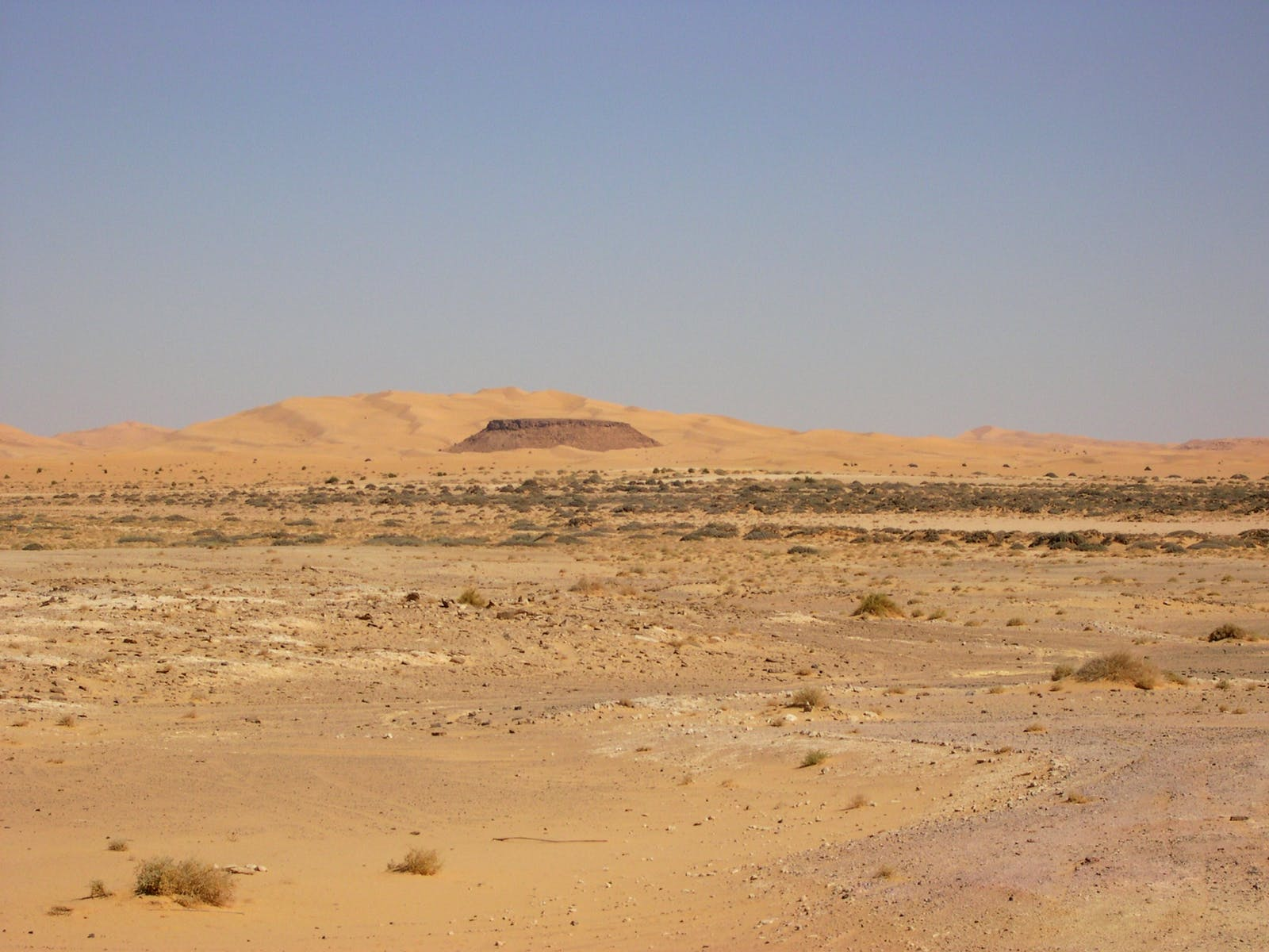 West Sahara Desert