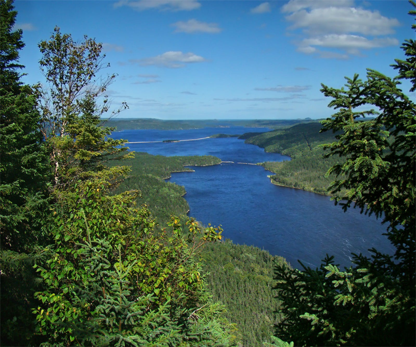 Eastern Canadian Boreal Forests