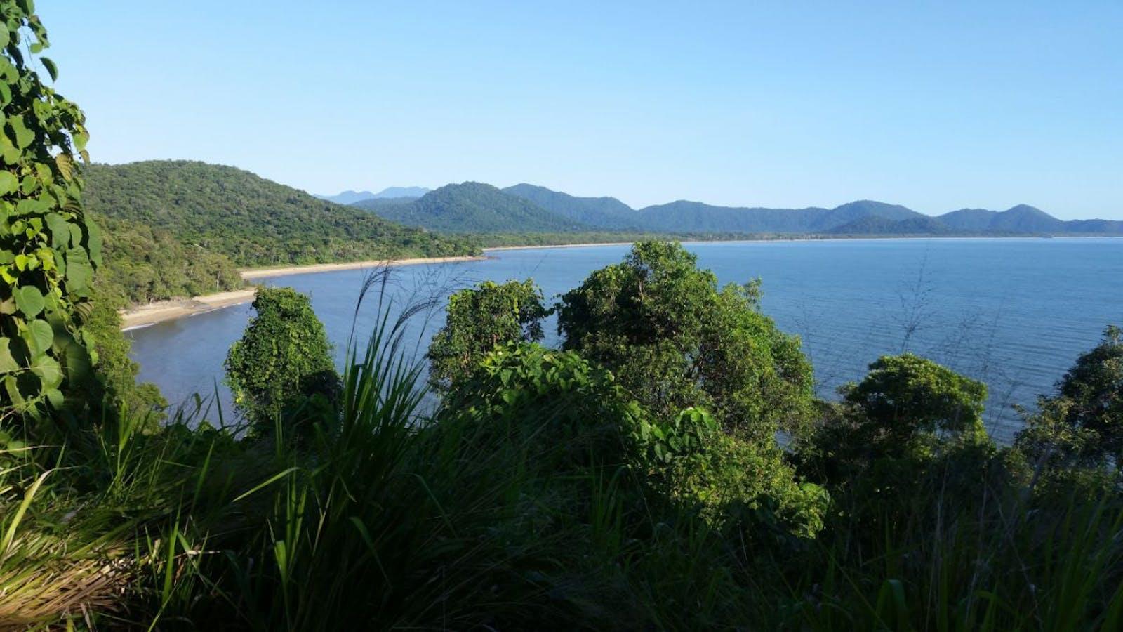 Queensland Tropical Rainforests