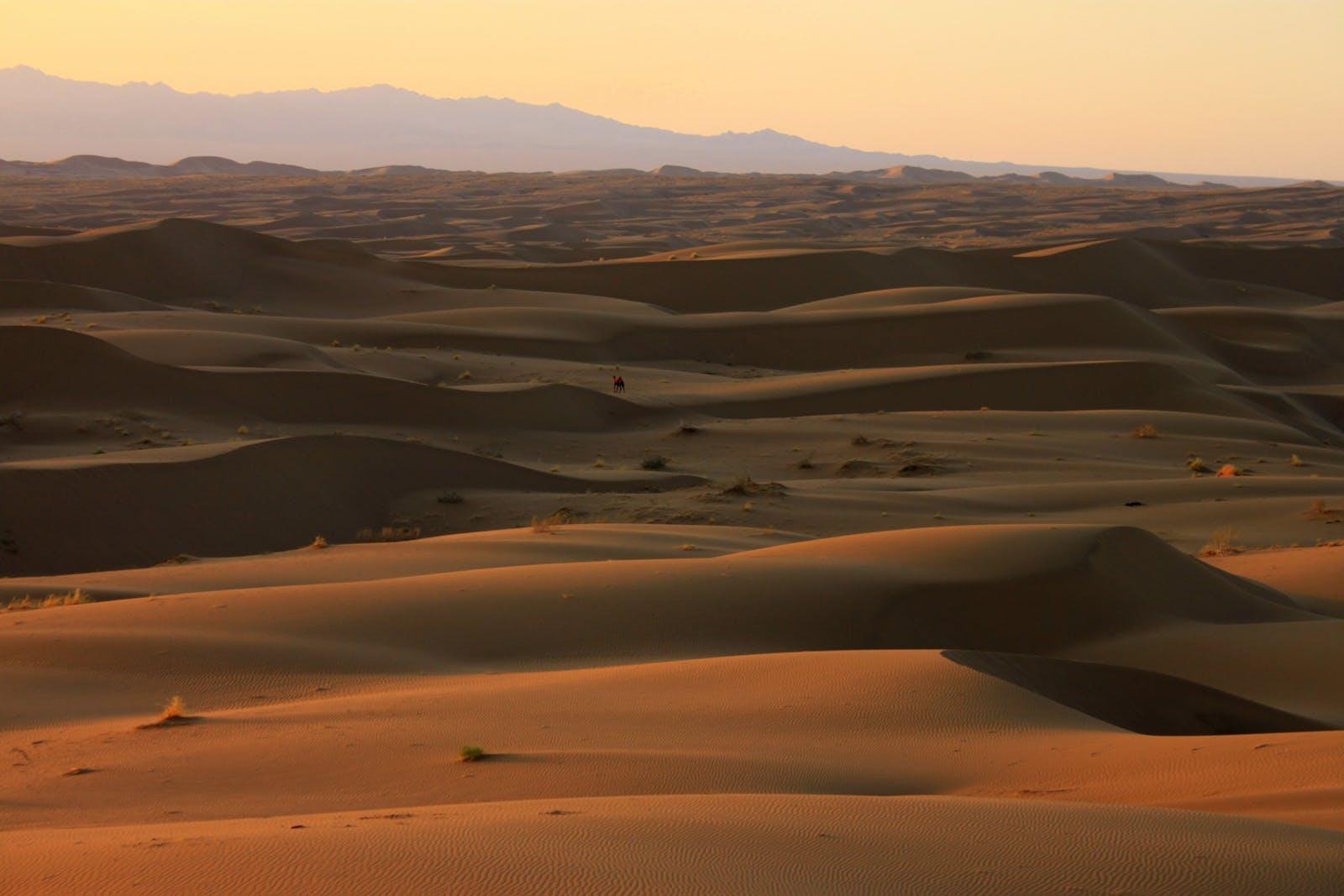 Central Persian Desert Basins