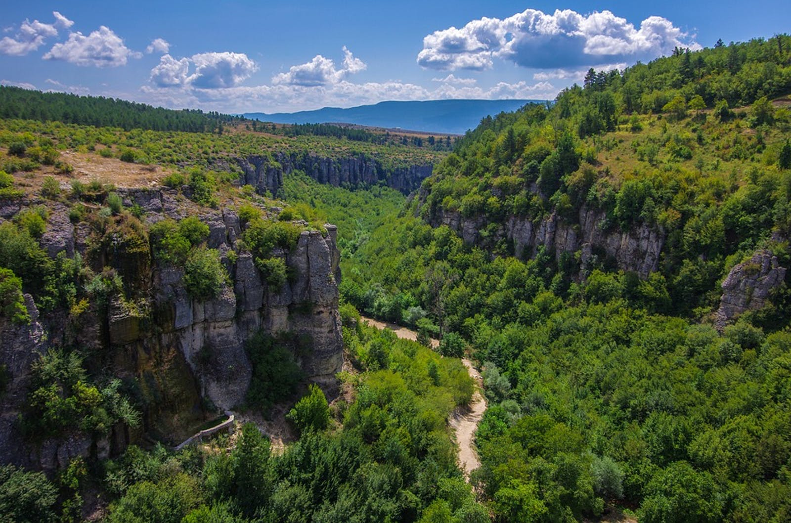 Northern Anatolian Conifer and Deciduous Forests