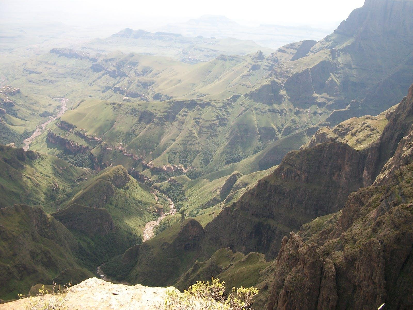 Drakensberg Escarpment Savanna and Thicket