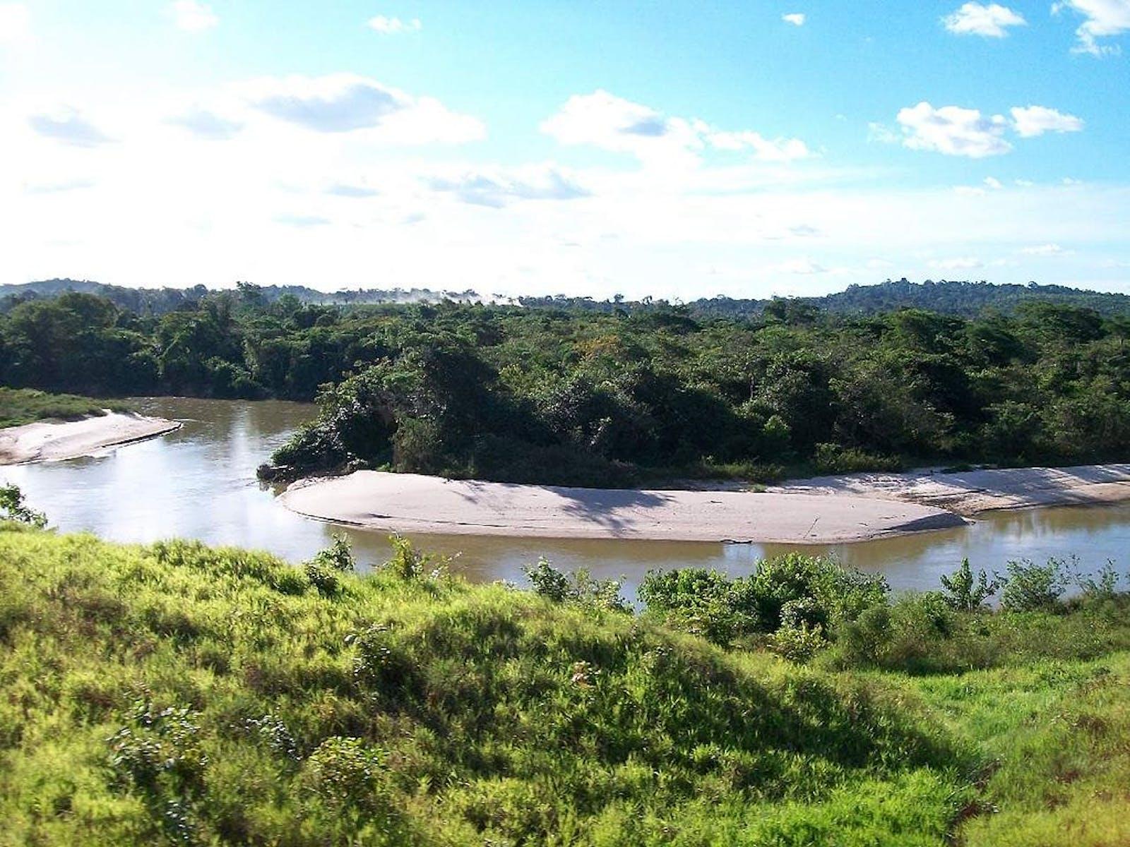Maranhão Babaçu Forests