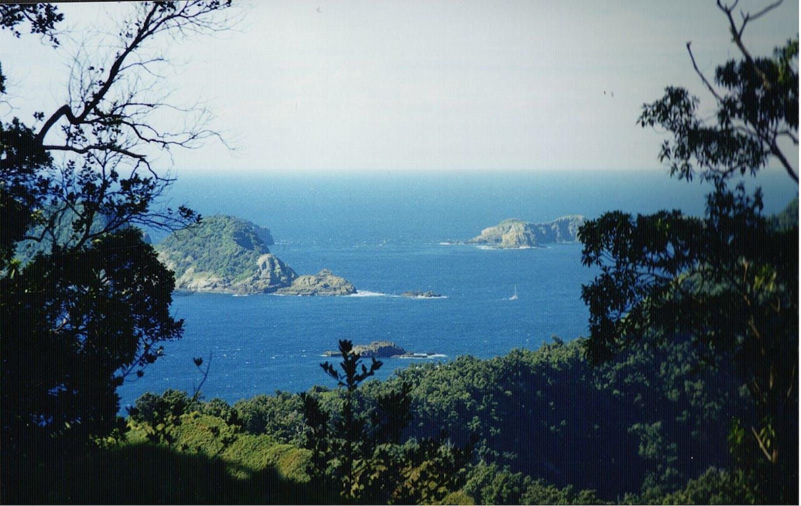Kermadec Islands Subtropical Moist Forests