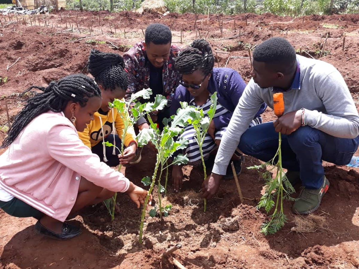 Building a Slow Food 'Earth Market' in Central and Eastern Africa