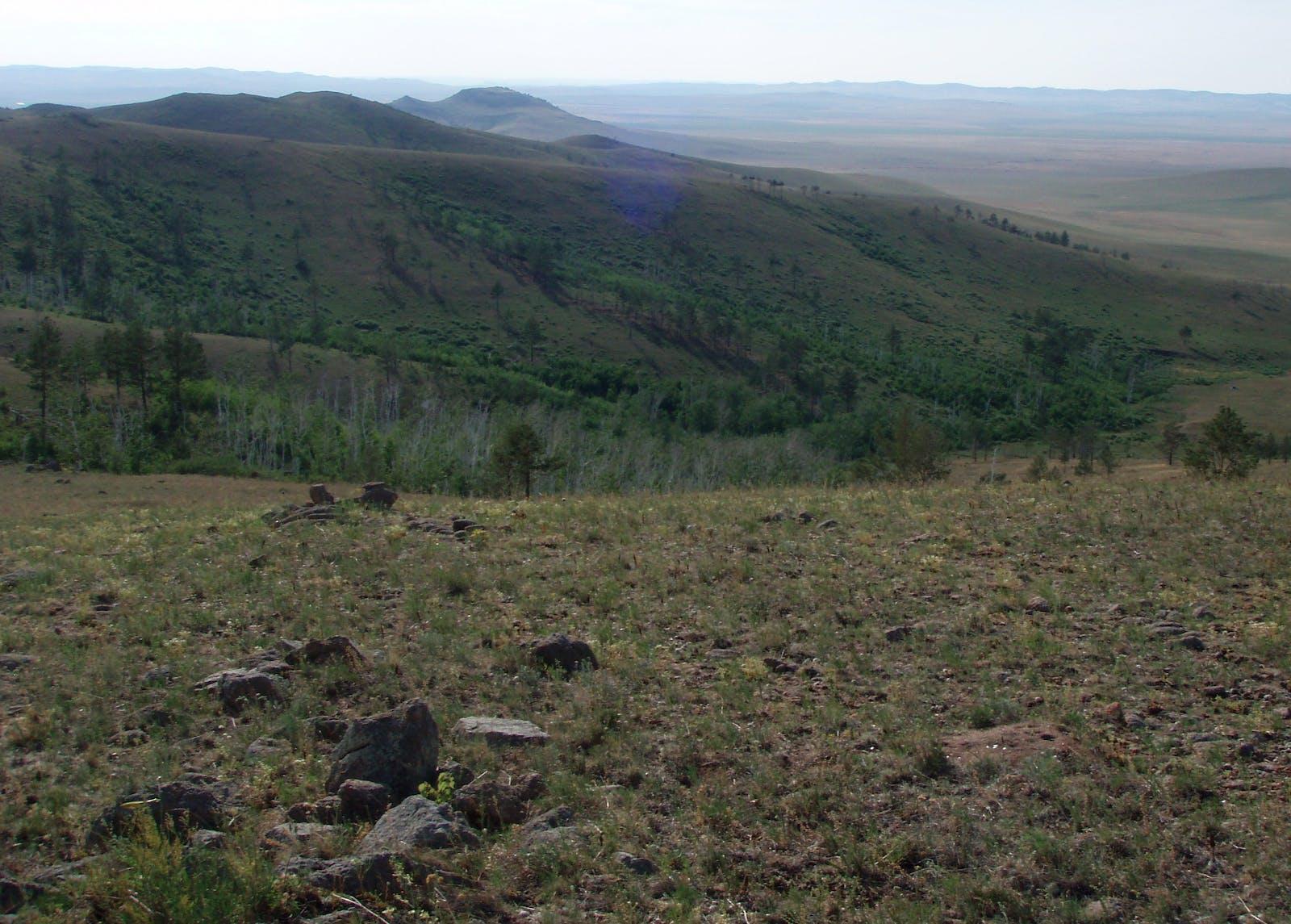 Daurian Forest Steppe