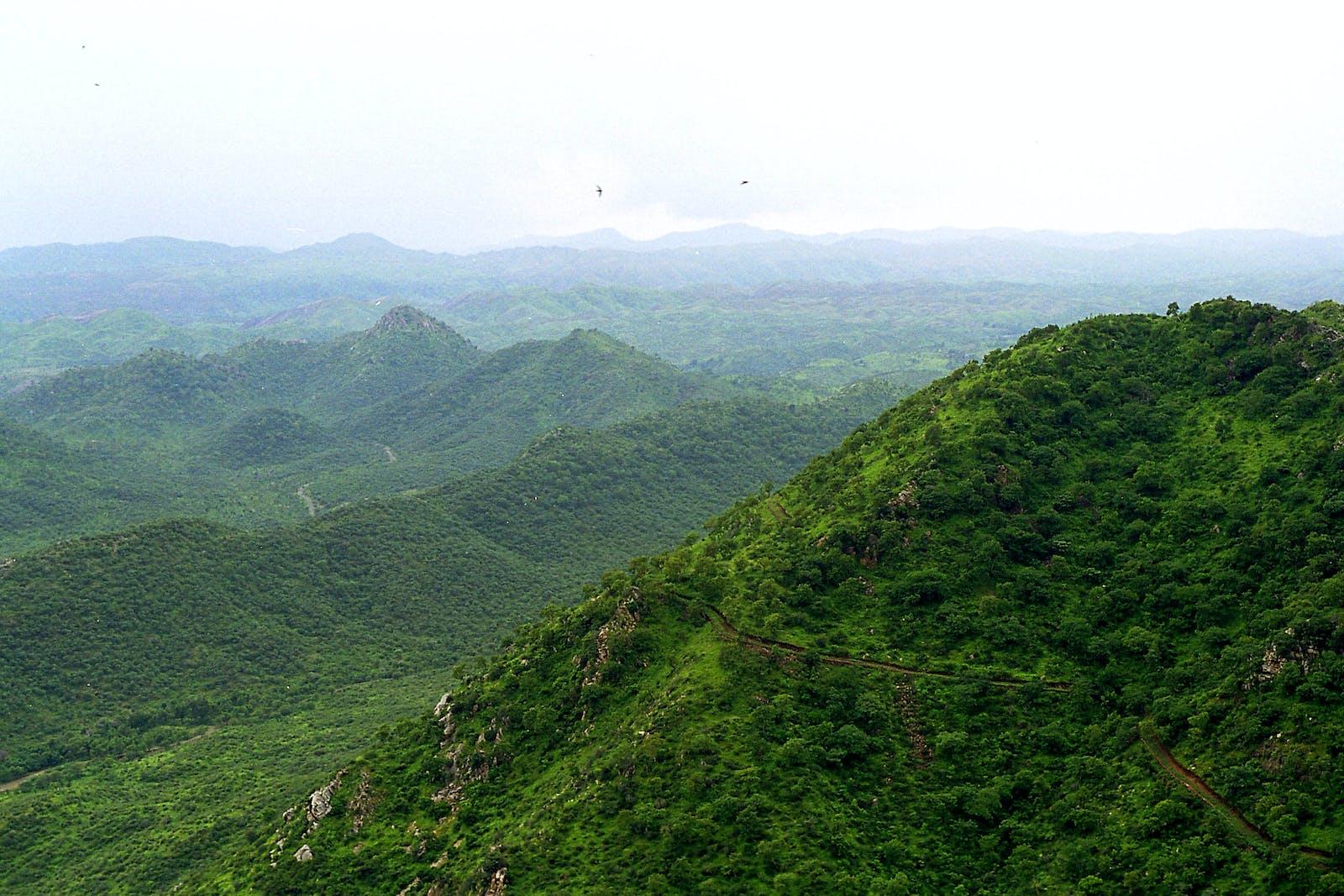 Khathiar-Gir Dry Deciduous Forests