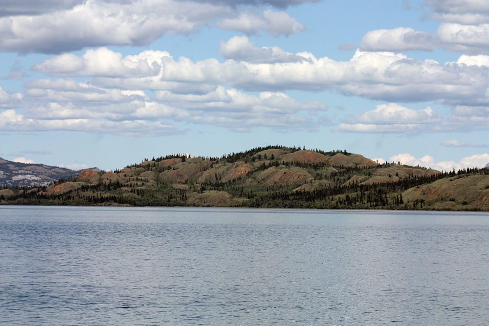 Watson Highlands Taiga