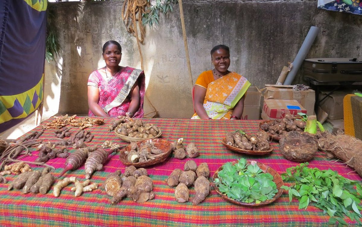 Transferring Traditional Knowledge by Supporting Women to Build Heirloom Seed Businesses in Karnataka, India