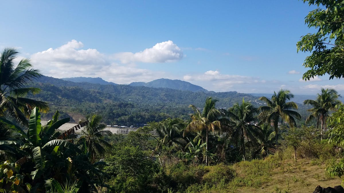 Saving Mount Alik Sacred Forest in the Philippines