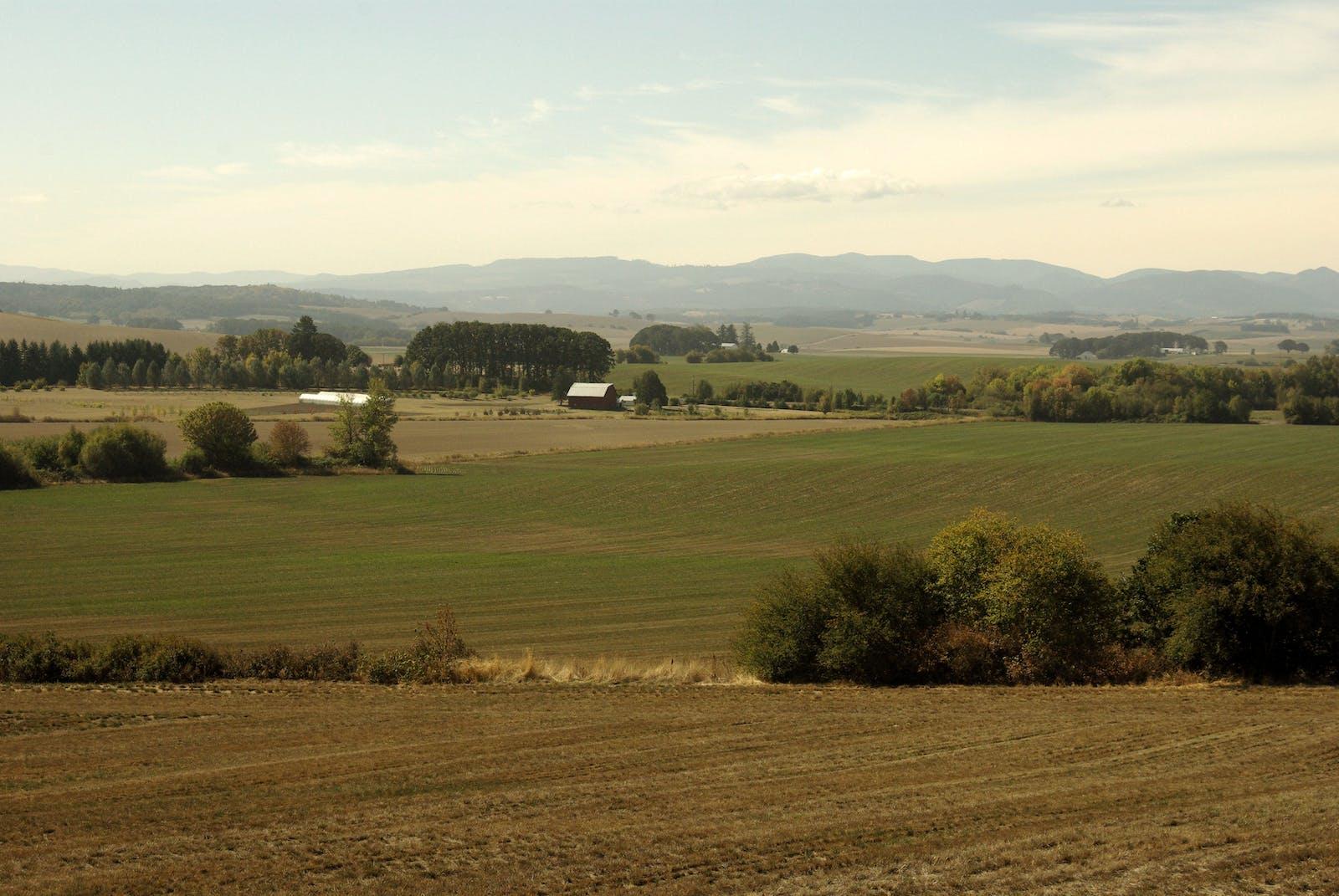 Willamette Valley Oak Savanna
