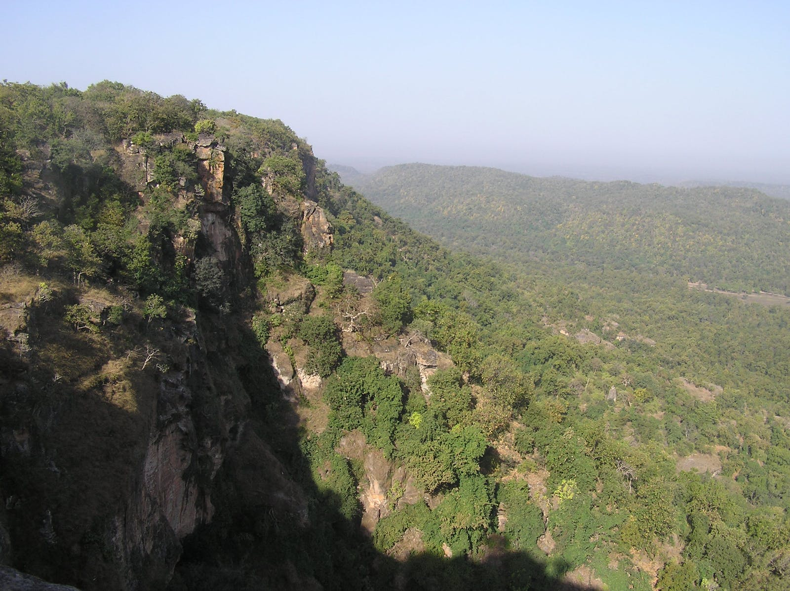 South Western Ghats Moist Deciduous Forests