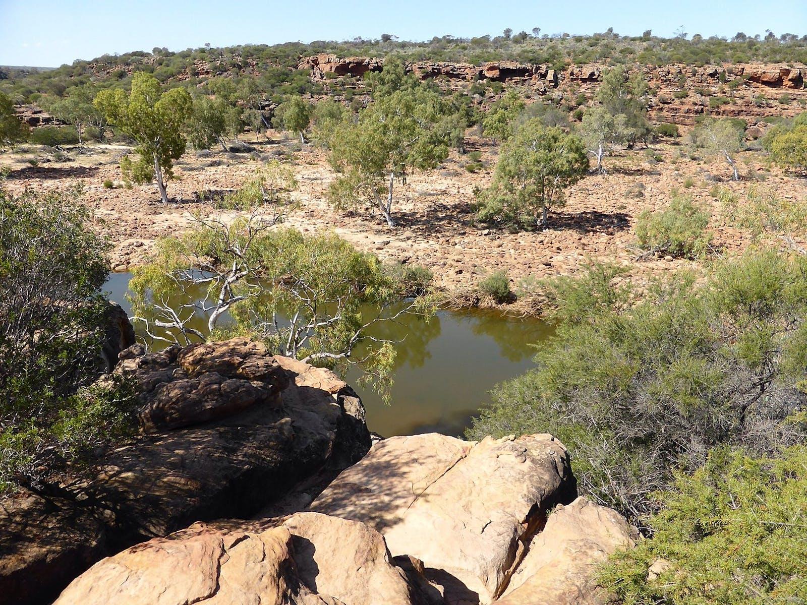 Southwest Australia Savanna