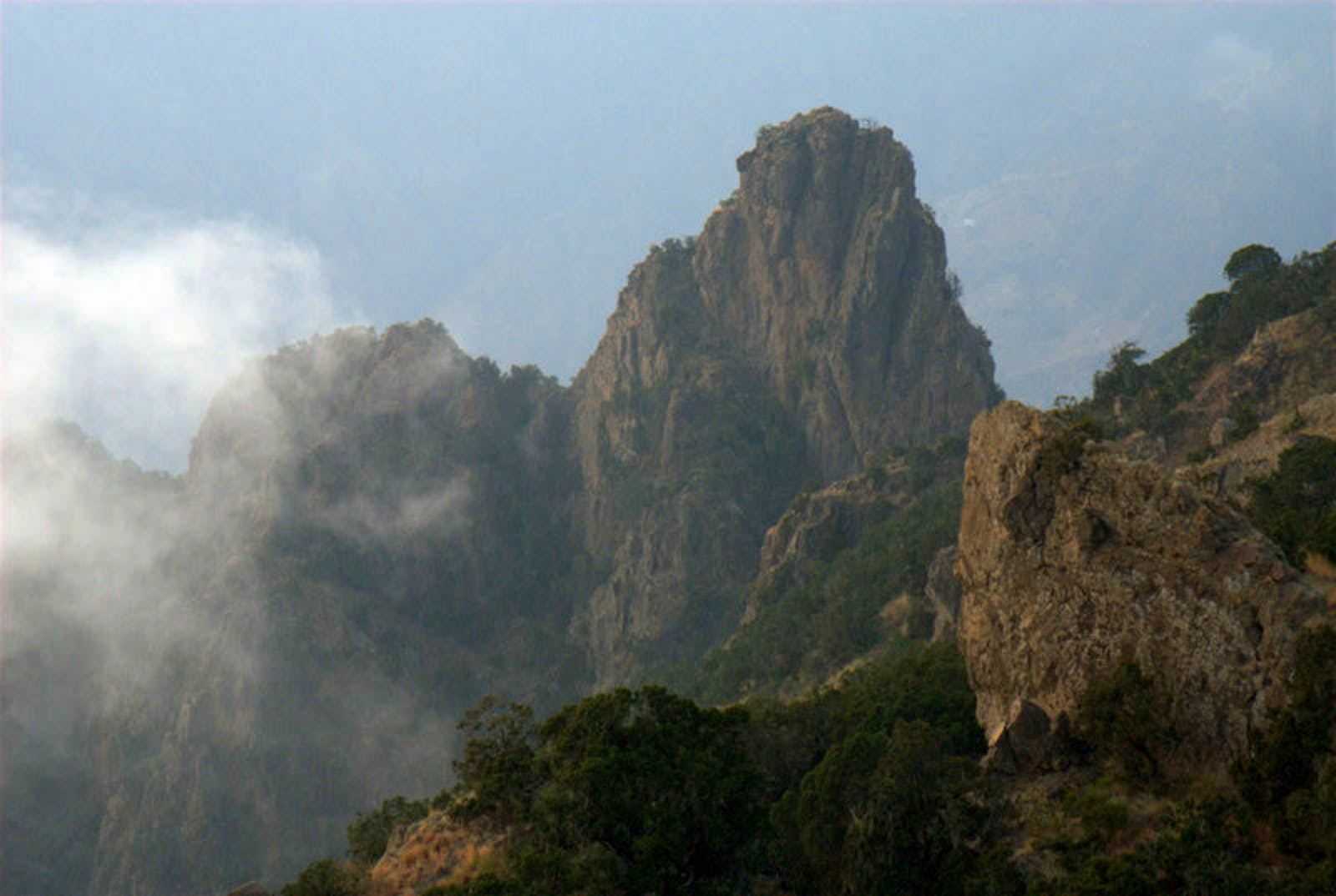 Southwest Arabian Montane Woodlands and Grasslands