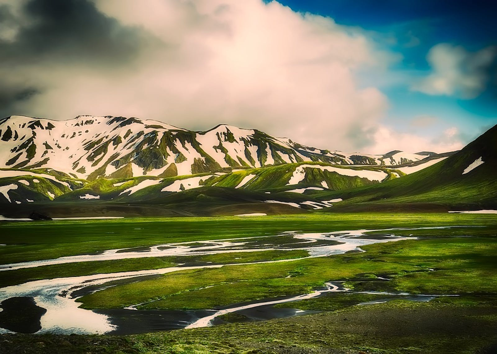 Iceland Boreal Birch Forests and Alpine Tundra