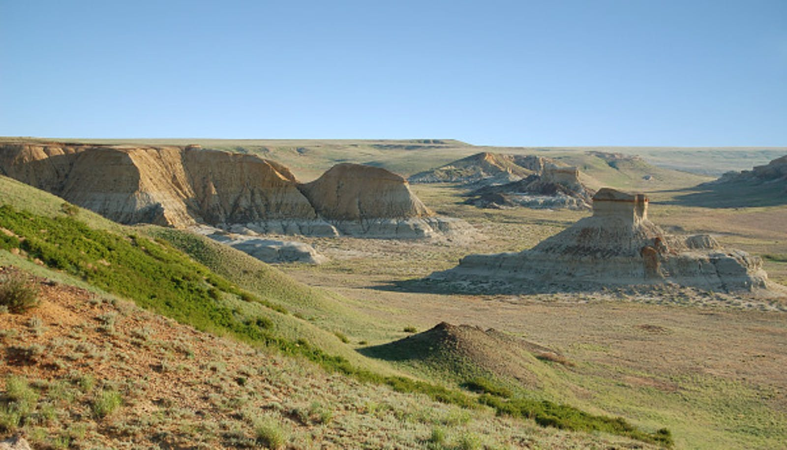 Kazakh Semi-Desert