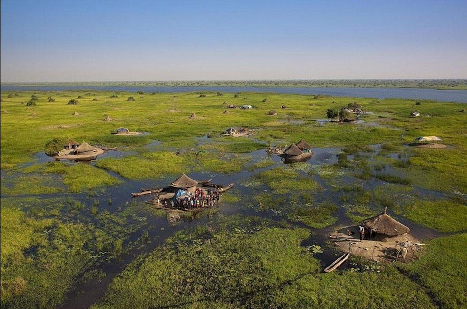 Sudd Flooded Grasslands