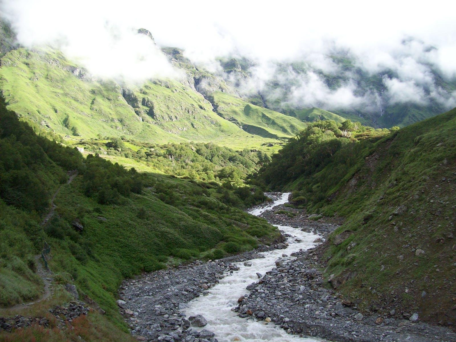 Western Himalayan Alpine Shrub and Meadows