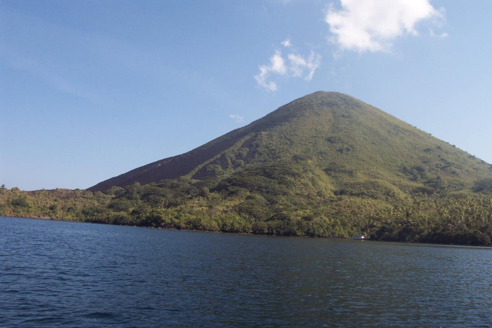 Banda Sea Islands Moist Deciduous Forests