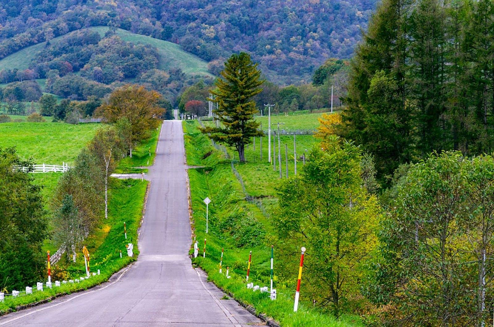 Hokkaido Deciduous Forests