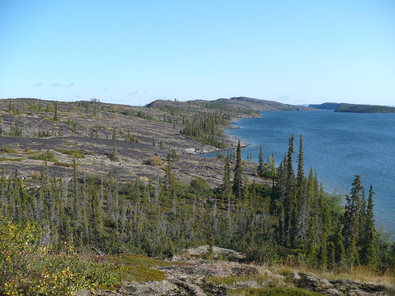 Northern Canadian Shield Taiga