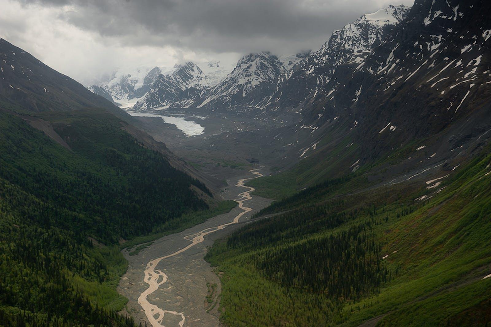 Alaska-St. Elias Range Tundra
