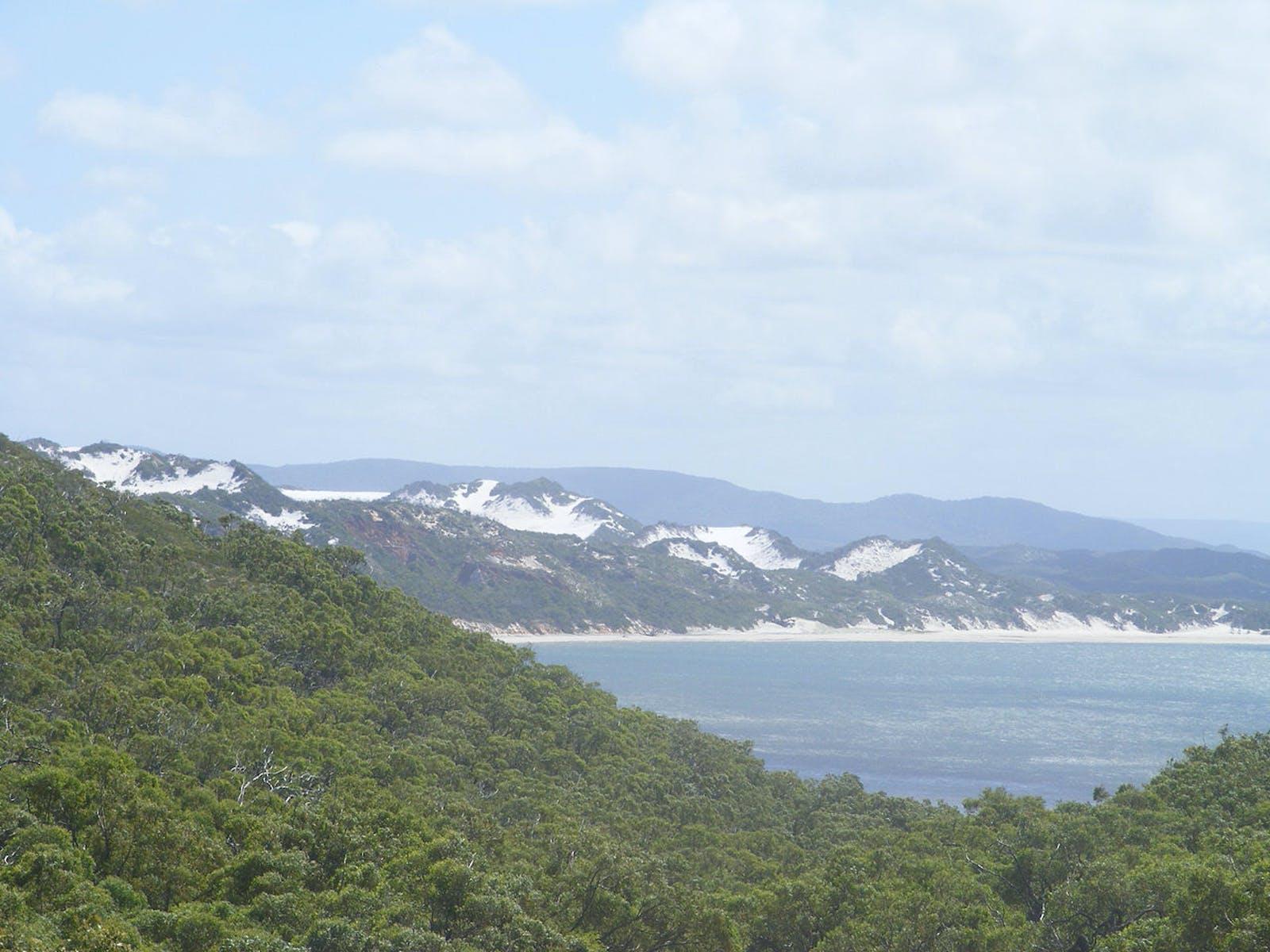 Cape York Peninsula Tropical Savanna