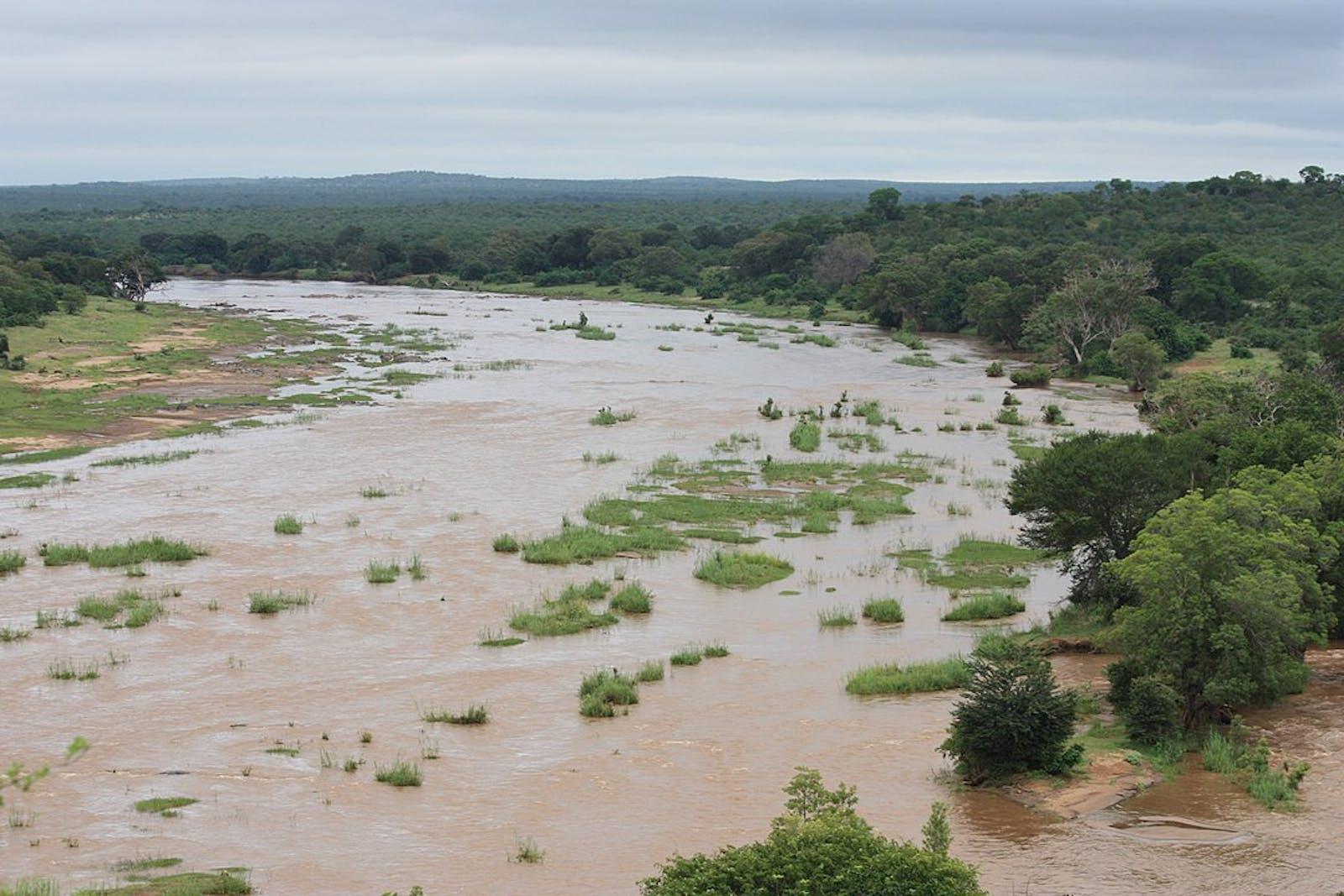 Zambezian Mopane Woodlands