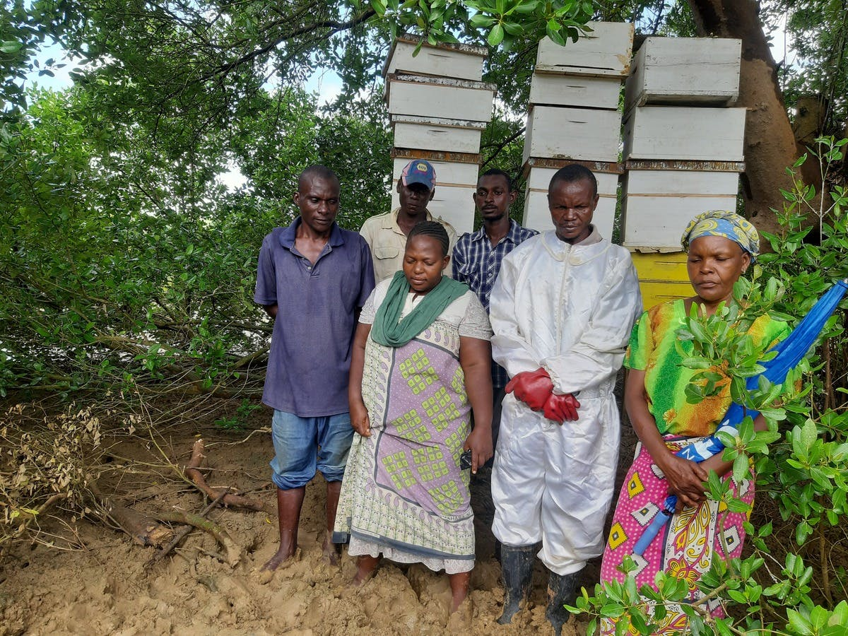 Caroline Nyambu (second from left) and his fellow farmers stands net to their apiary in Mwakirunge village along the Tudor.